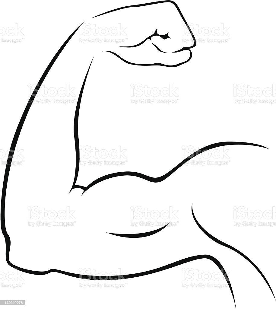 Bicep vector art illustration