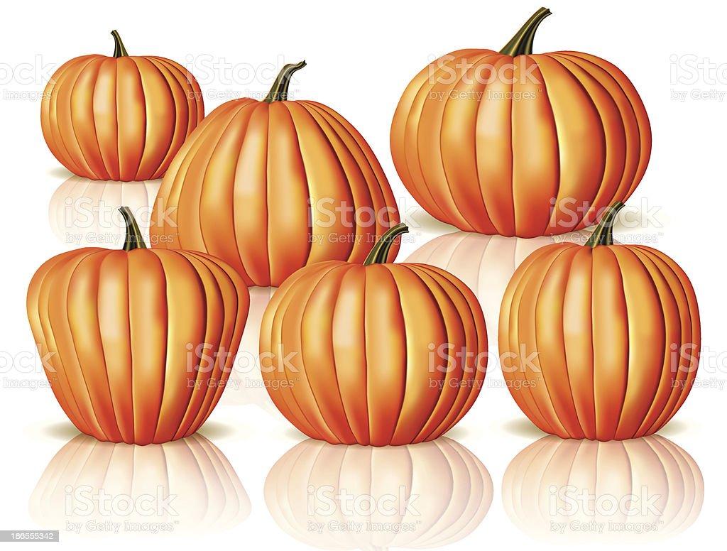 Big and small pumpkins royalty-free stock vector art