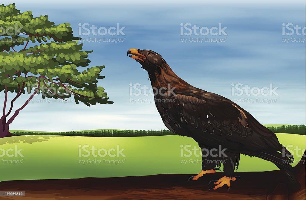 big bird royalty-free stock vector art