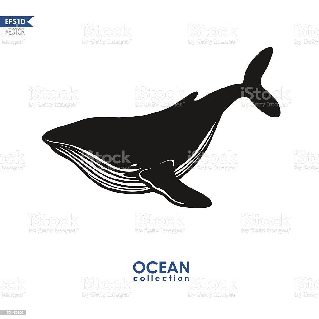 big blue whale vector art illustration