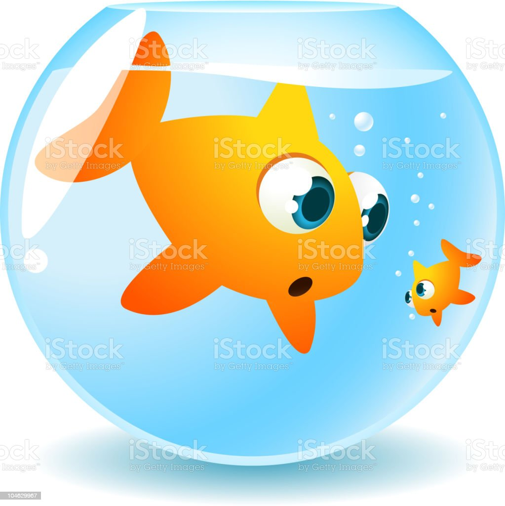 Big brother fish looking at small sibling in Fishbowl royalty-free stock vector art