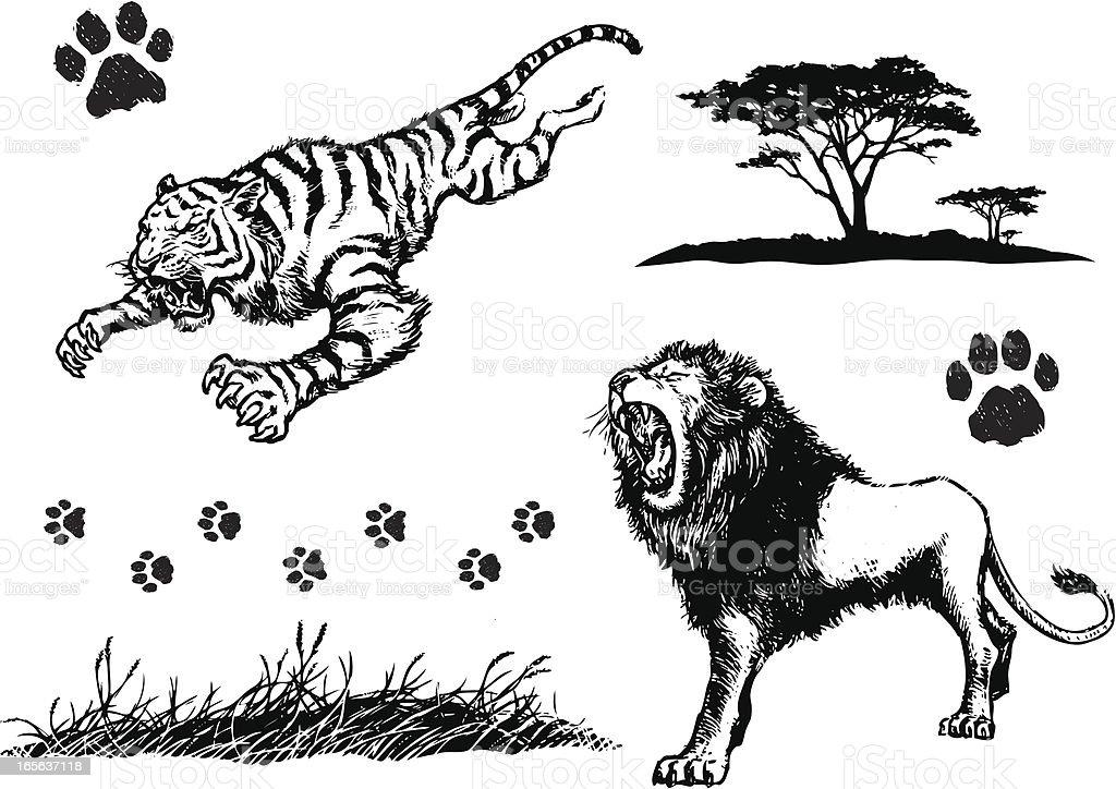 Big Cat Elements vector art illustration