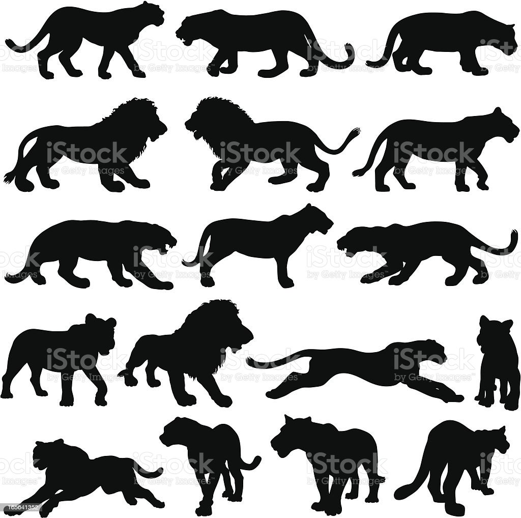 Big cat silhouette collection vector art illustration
