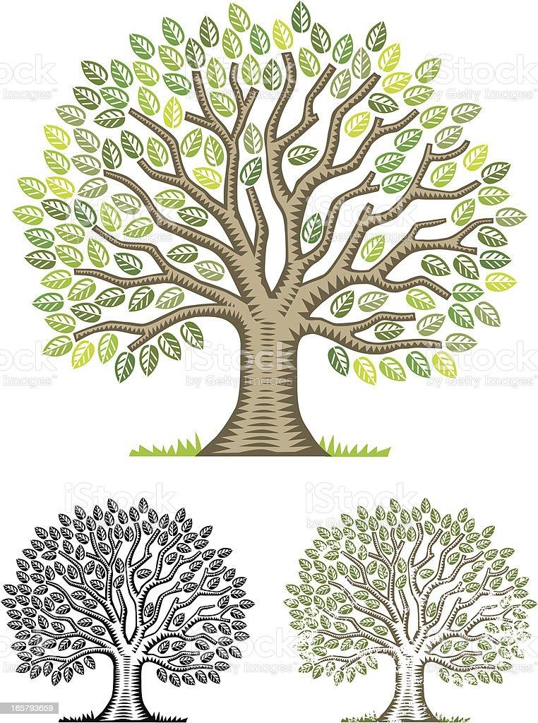 Big chunky woodcut tree royalty-free stock vector art