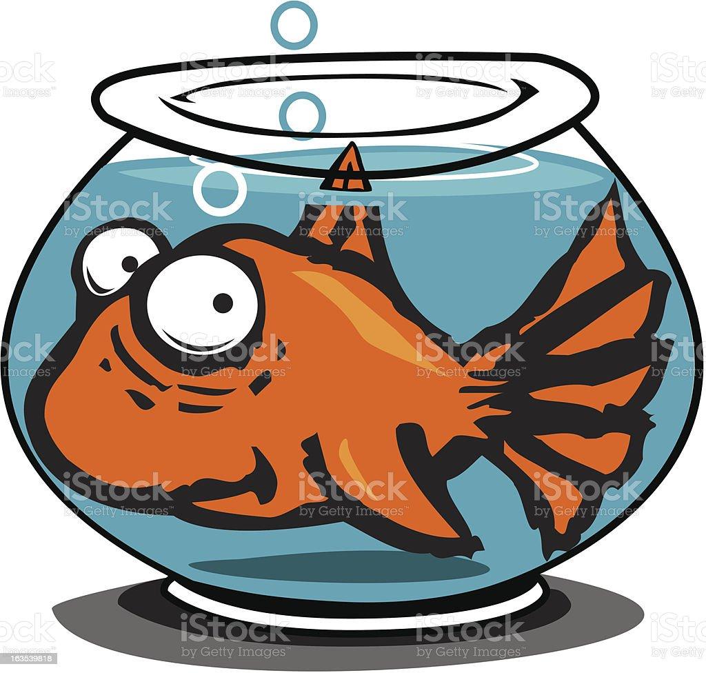 Big Gold Fish royalty-free stock vector art