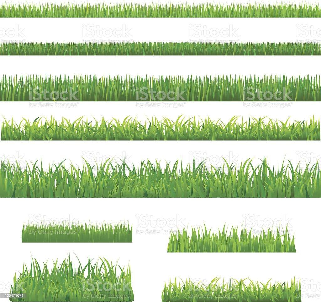 Big Green Grass vector art illustration