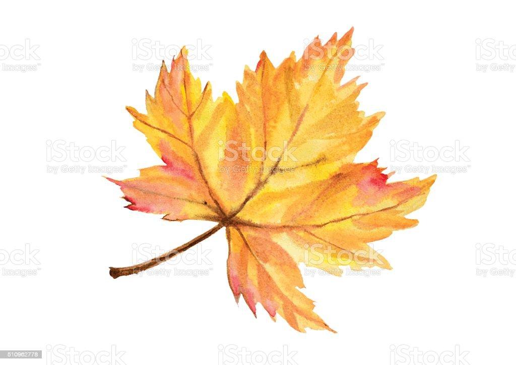 Big maple autumn leaf vector art illustration