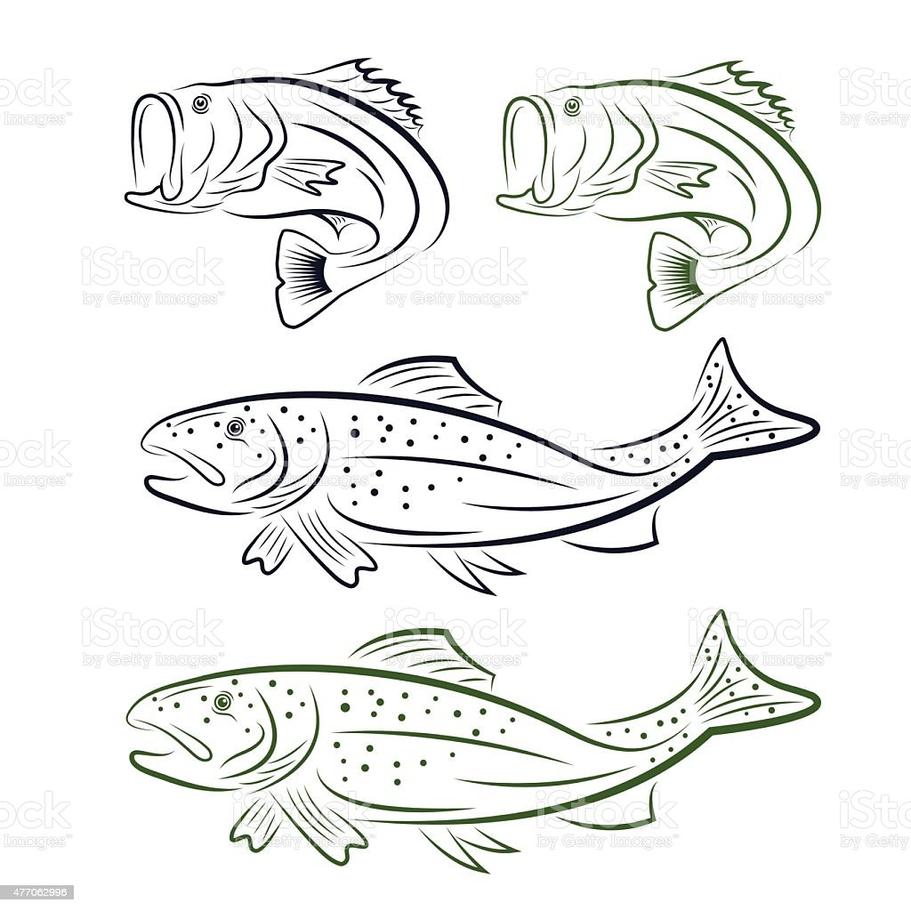 big mouth bass and trout set vector art illustration
