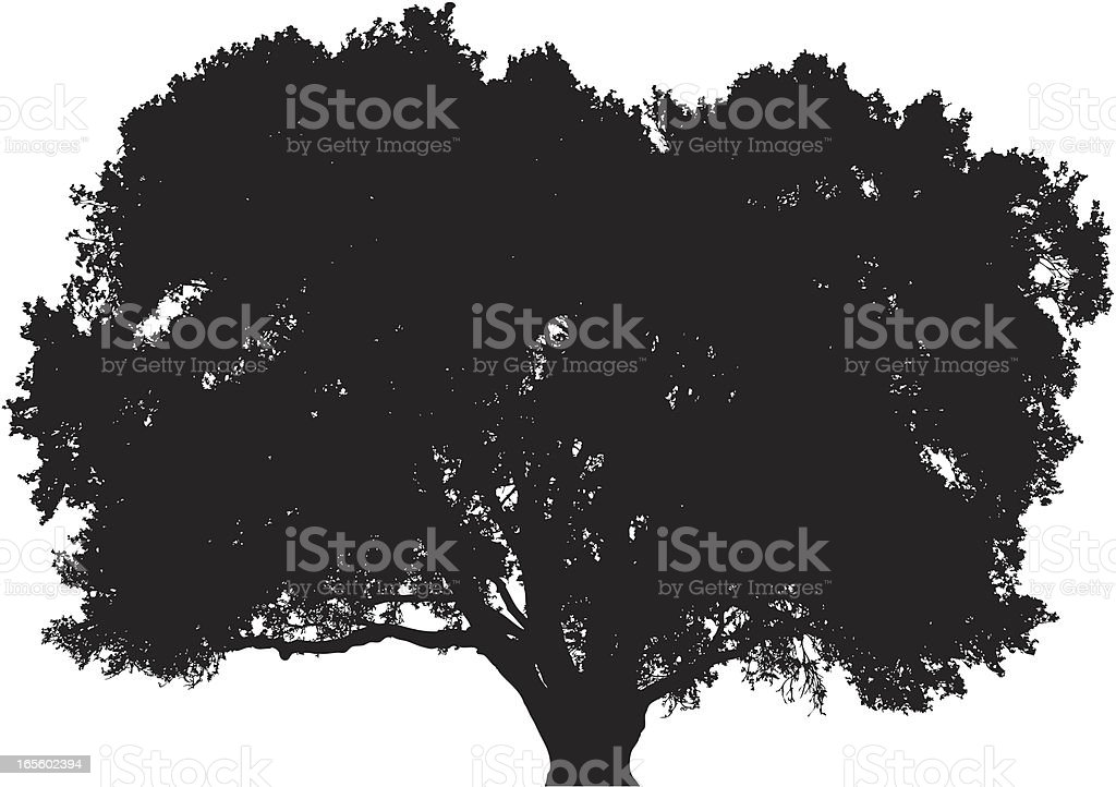 Big oak tree silhouette royalty-free stock vector art