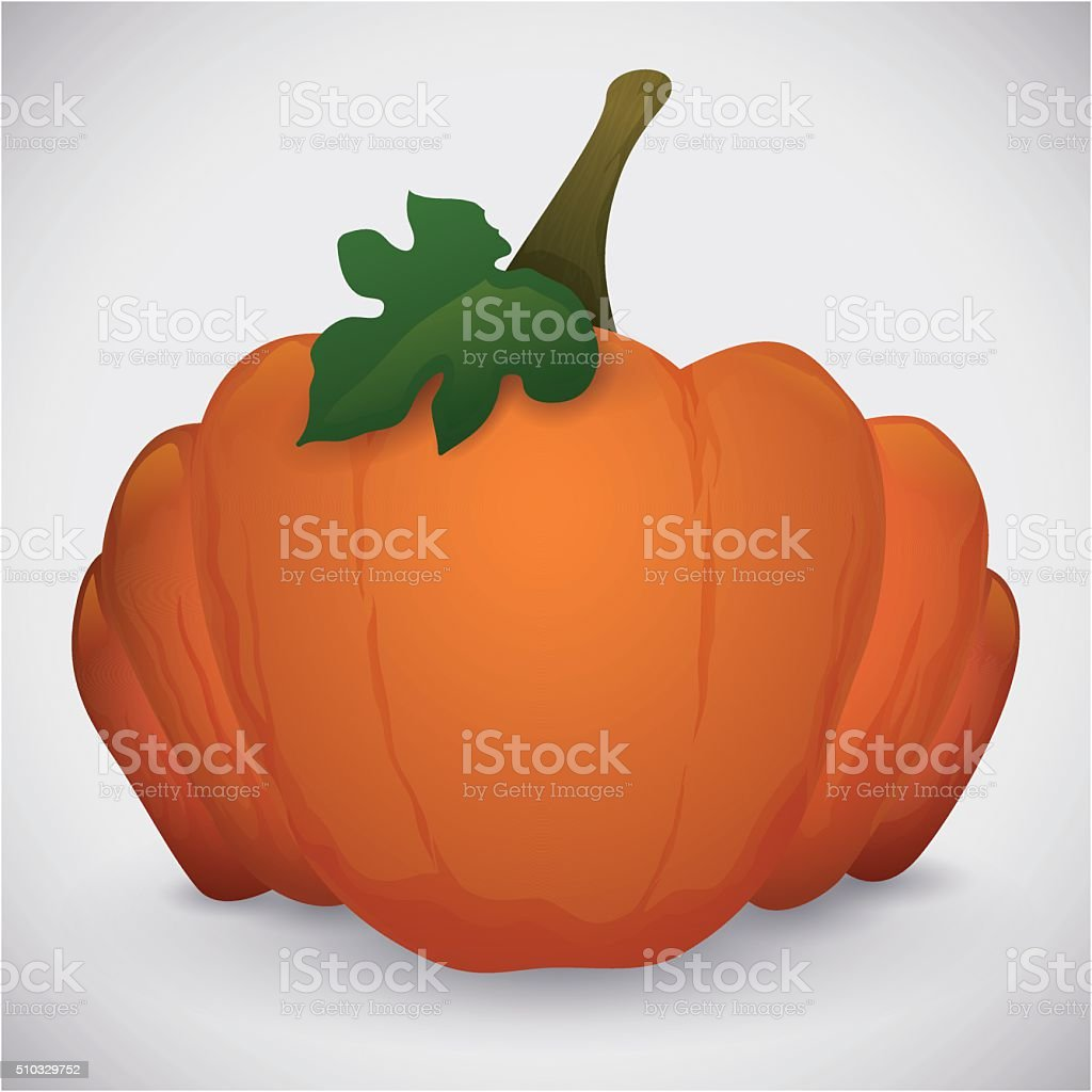 Big Pumpkin with Leaf and Stem Isolated vector art illustration