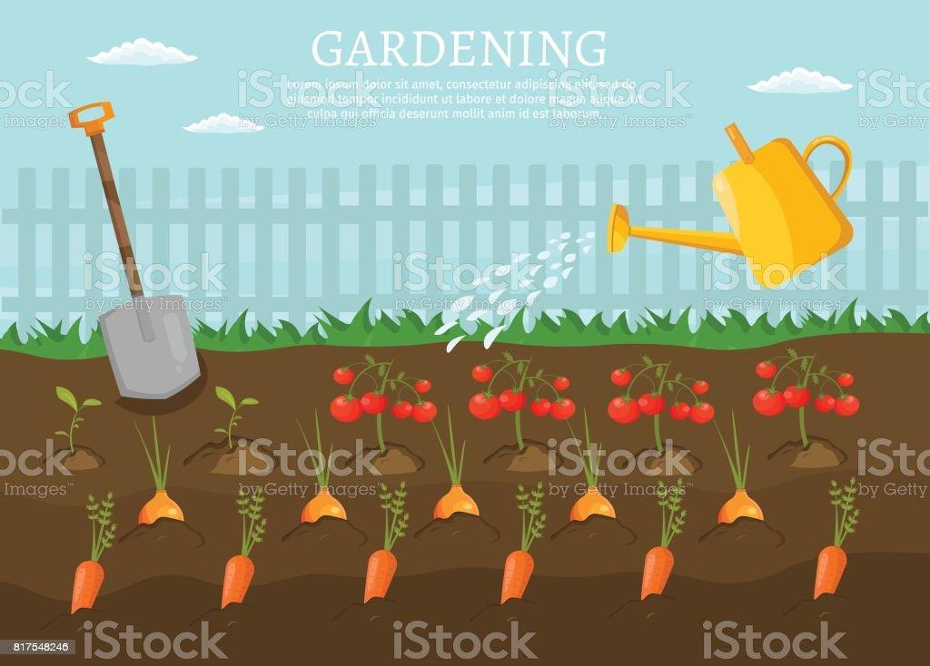 Big set infographics vector farm elements and ecology cartoon gardening background vector art illustration