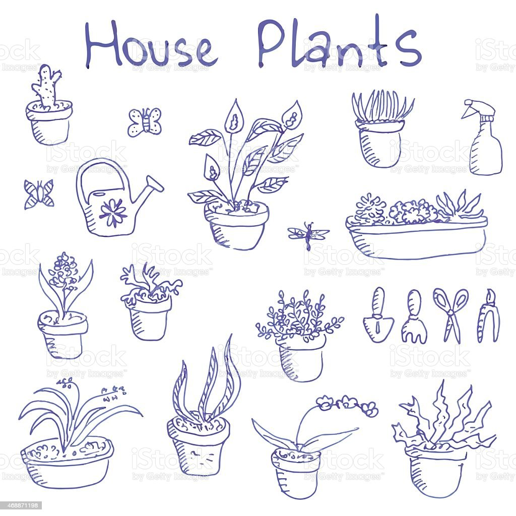 Big set of liner pen hand-drawn houseplants and garden tools vector art illustration