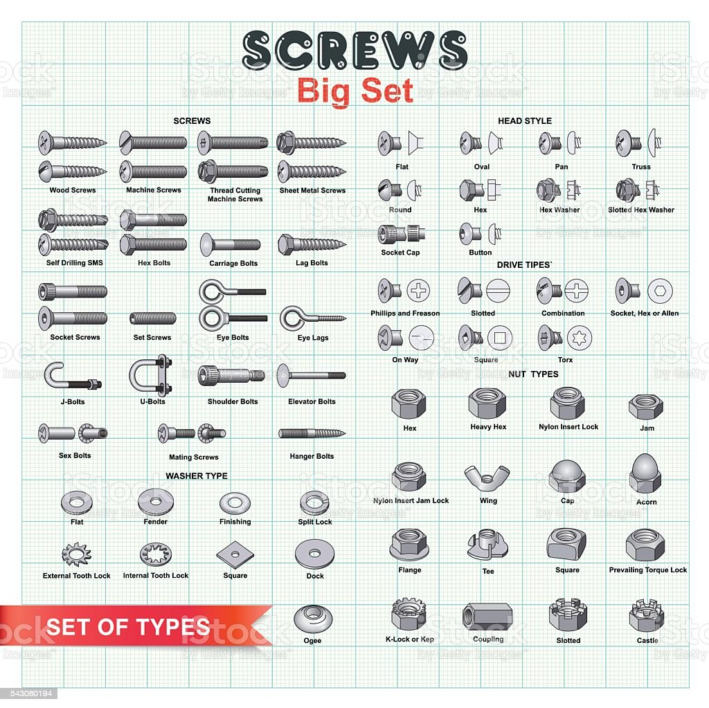 SCREWS Big Set vector art illustration