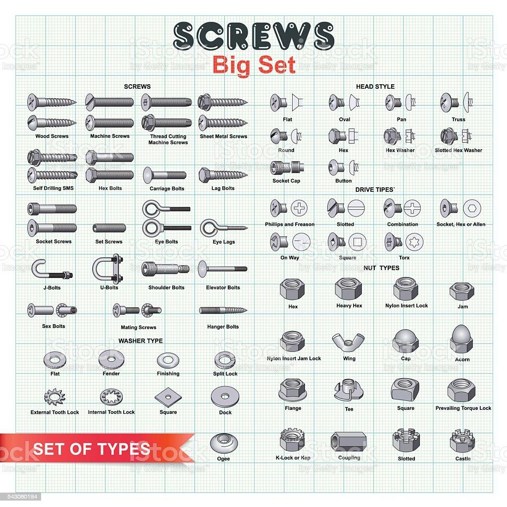 SCREWS Big Set vector art illustration