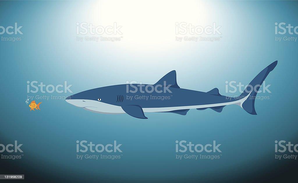 Big Shark and Small Fish royalty-free stock vector art