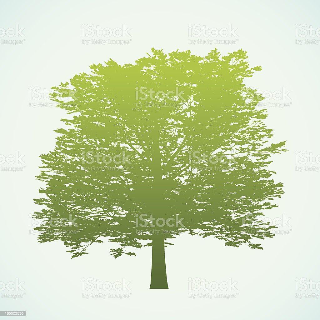 Big tree silhouette royalty-free stock vector art