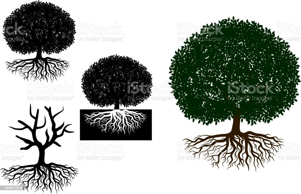 Big tree with roots royalty-free stock vector art