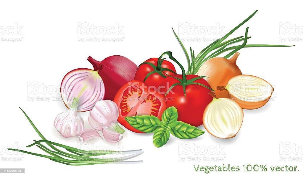 Big vector set of fresh vegetables. vector art illustration