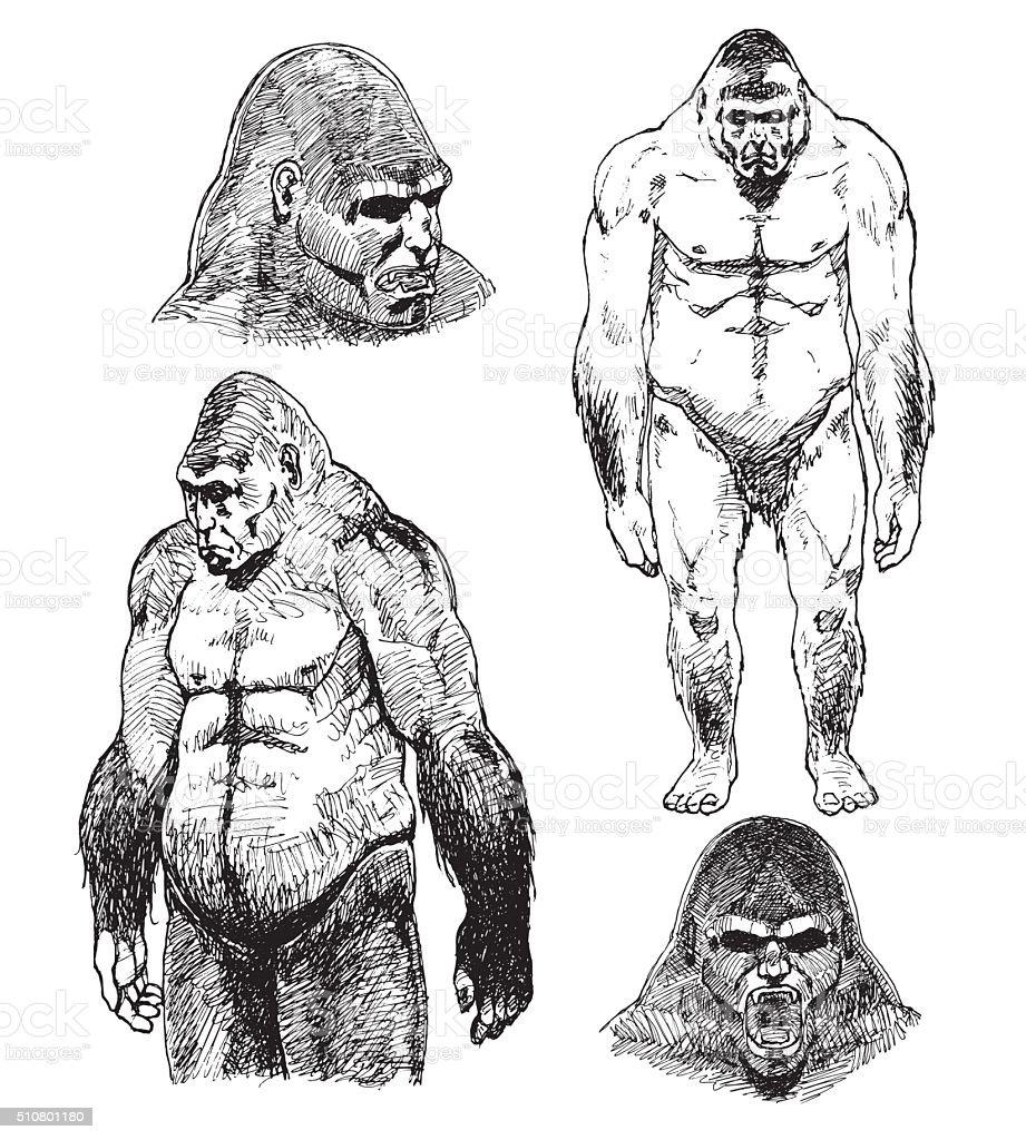 Bigfoot Sasquatch sketch. Pen drawing Illustration vector art illustration