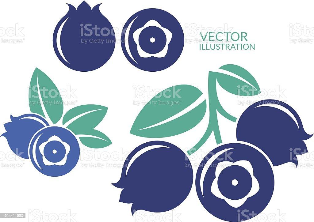 Bilberry vector art illustration