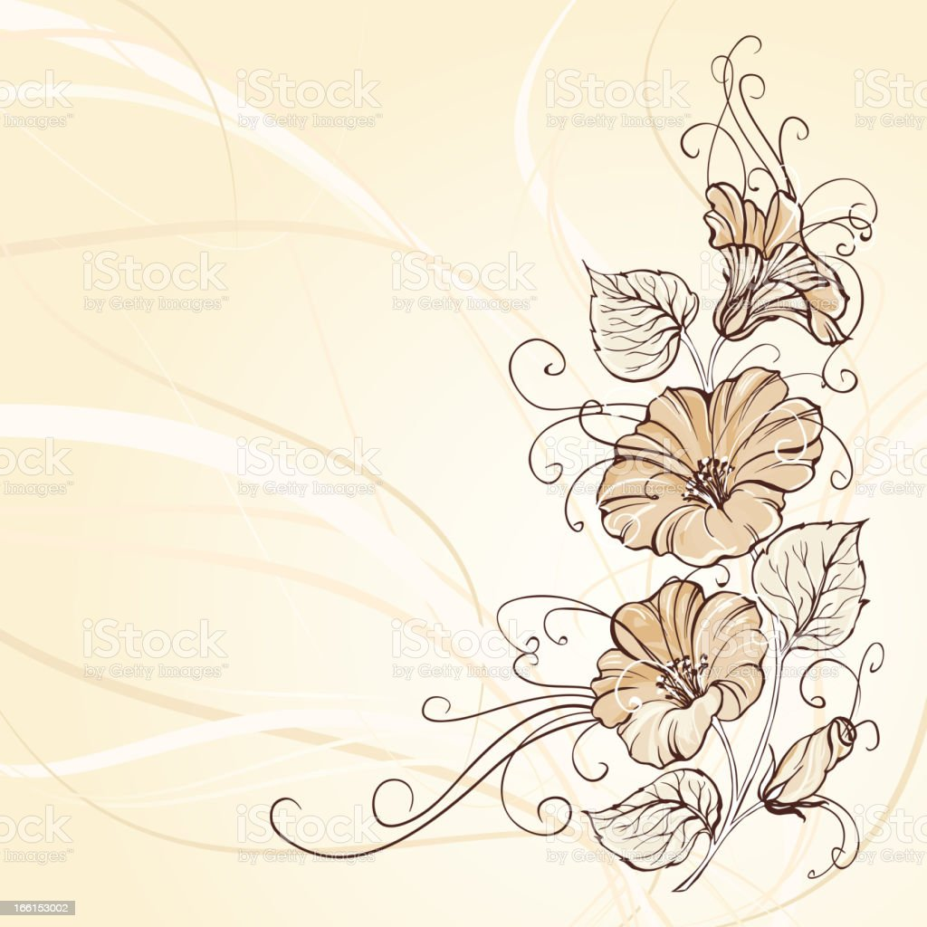 Bindweed on a sepia background royalty-free stock vector art