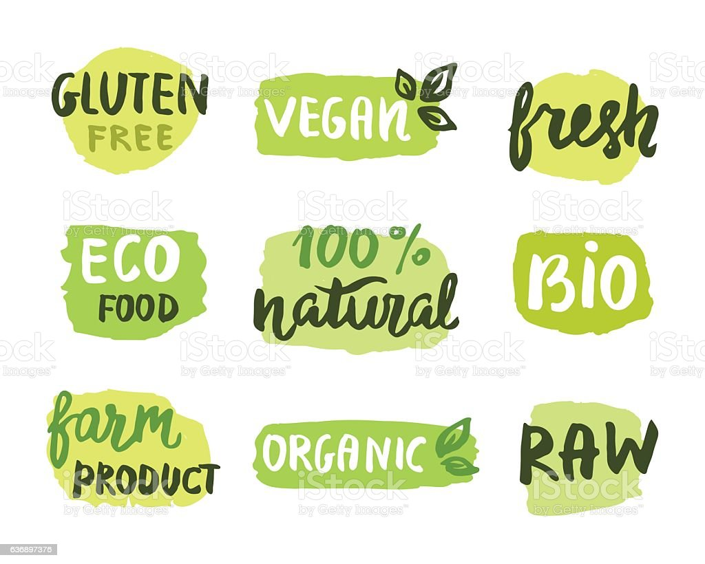 Bio natural food concept vector art illustration