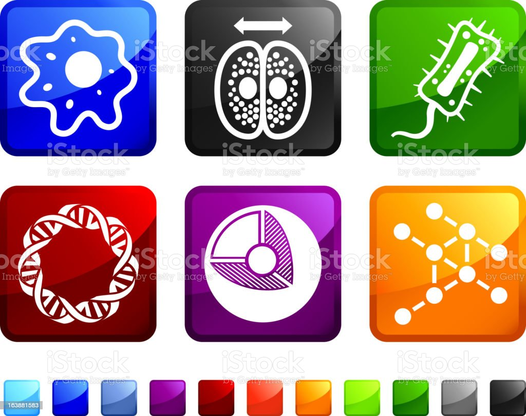 Biology and Microscopic Organisms royalty free vector icon set stickers vector art illustration