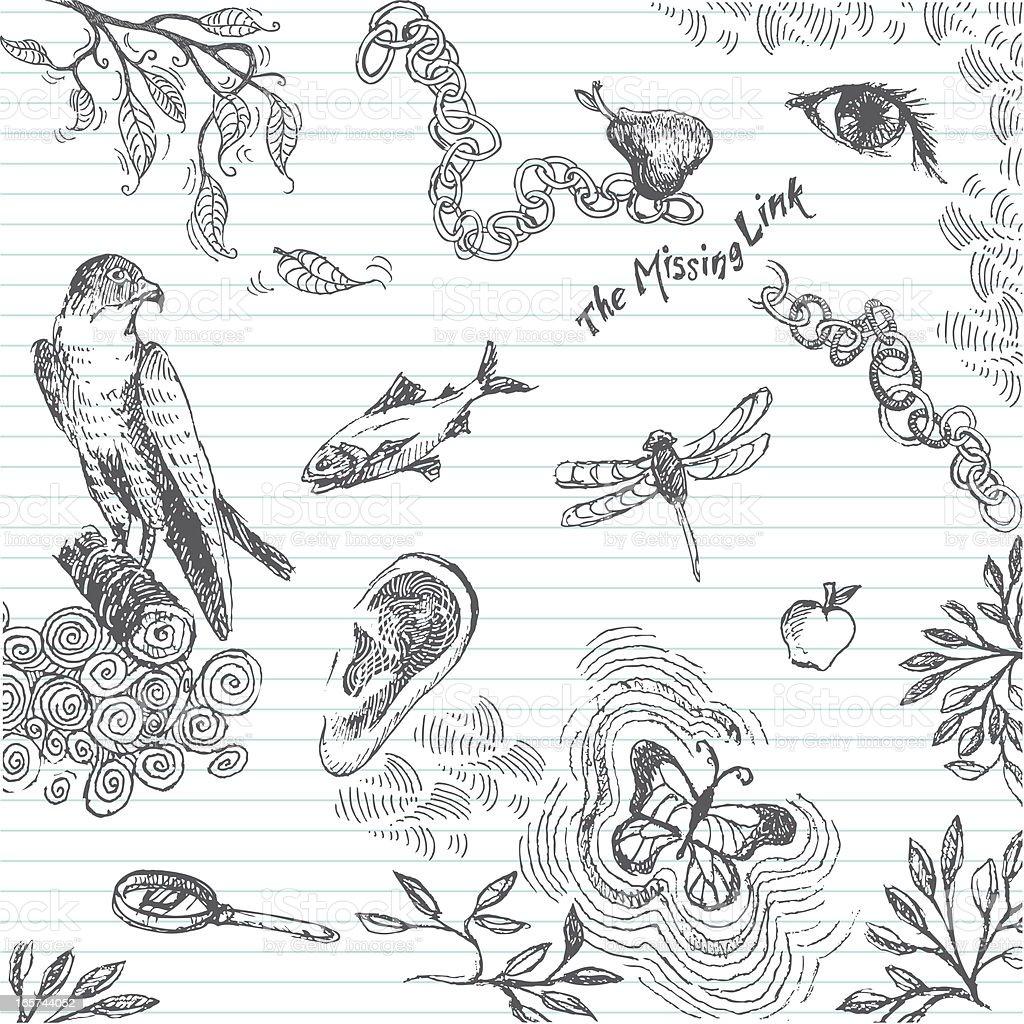 Biology Class Doodle royalty-free stock vector art
