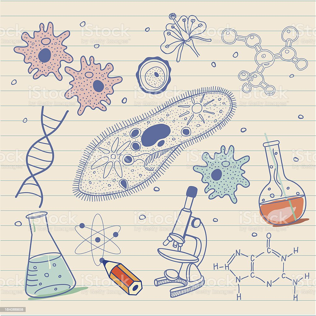 Biology sketches royalty-free stock vector art