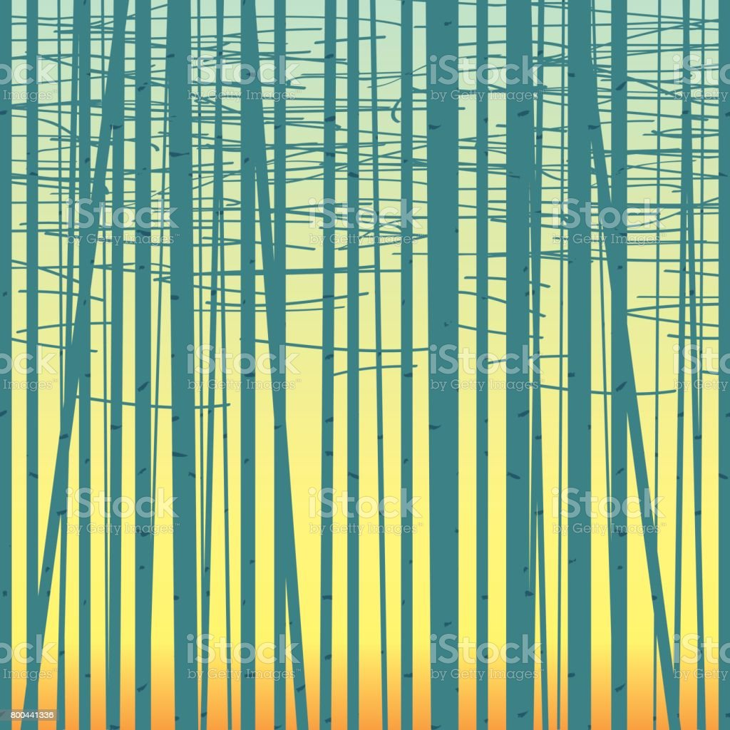 Birch grove vector background against the sky vector art illustration