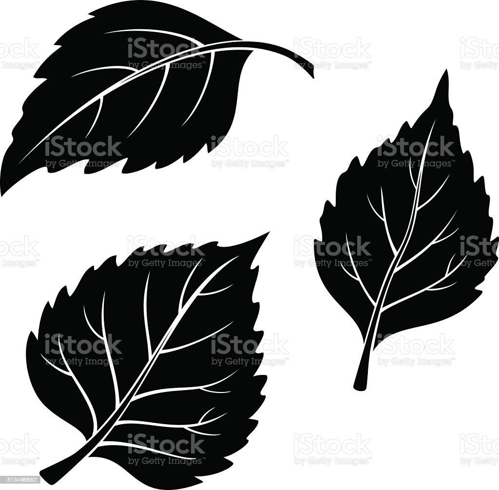 Birch Leaves, Pictogram Set vector art illustration
