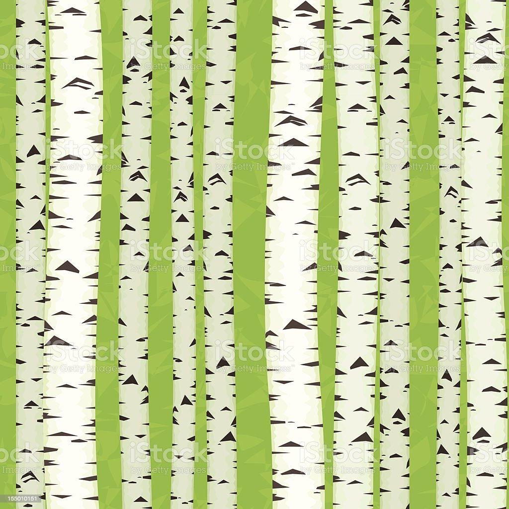Birch Stems  seamless, vector art illustration