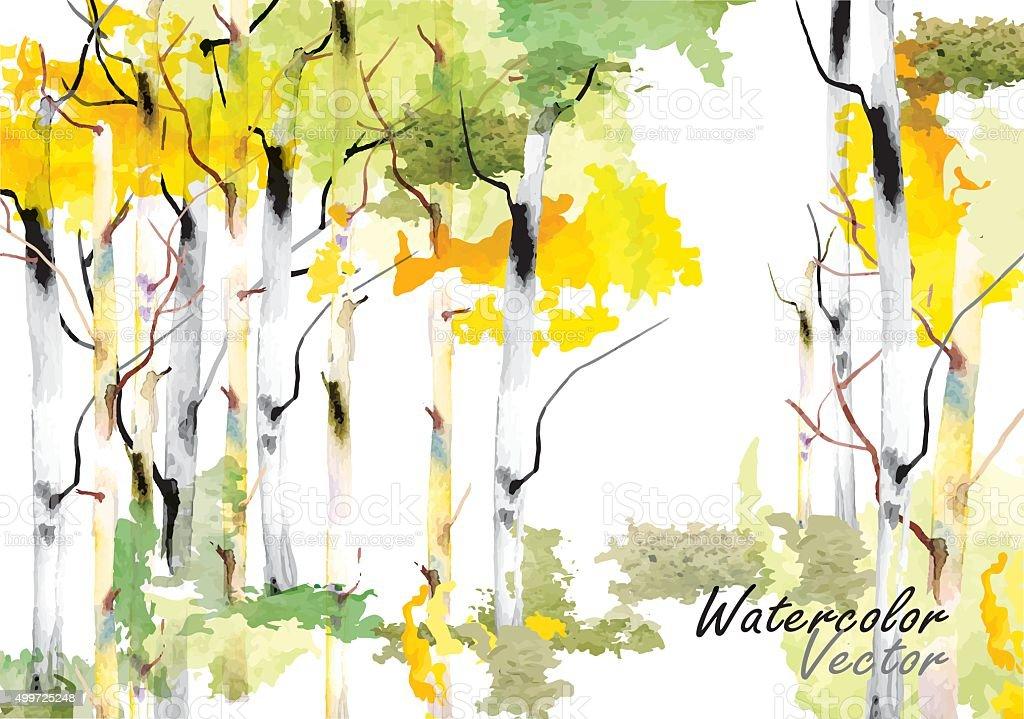 Birch tree ,forest birch trees  vector watercolor brush hand drawn vector art illustration