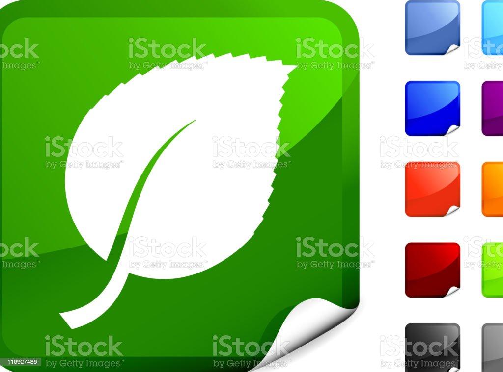 birch tree leaf royalty free vector art on a Sticker royalty-free stock vector art