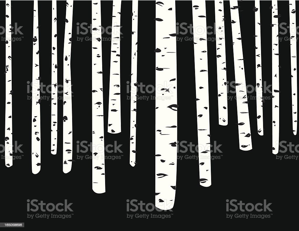 Birch Trees royalty-free stock vector art