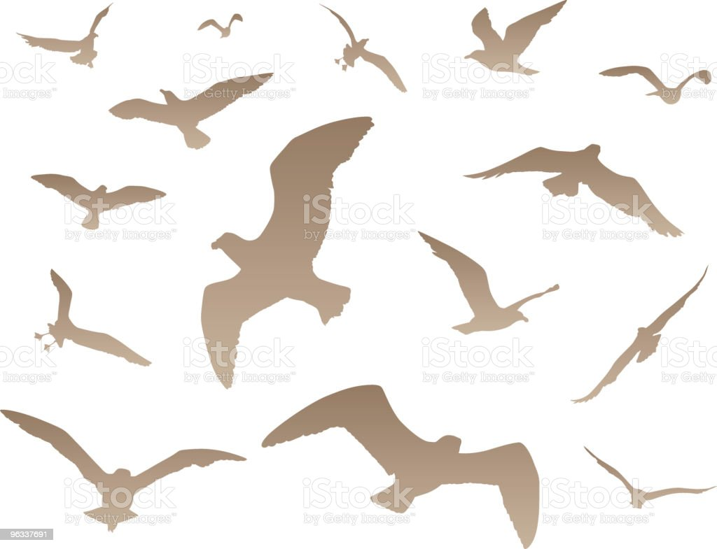 Bird Collection royalty-free stock vector art