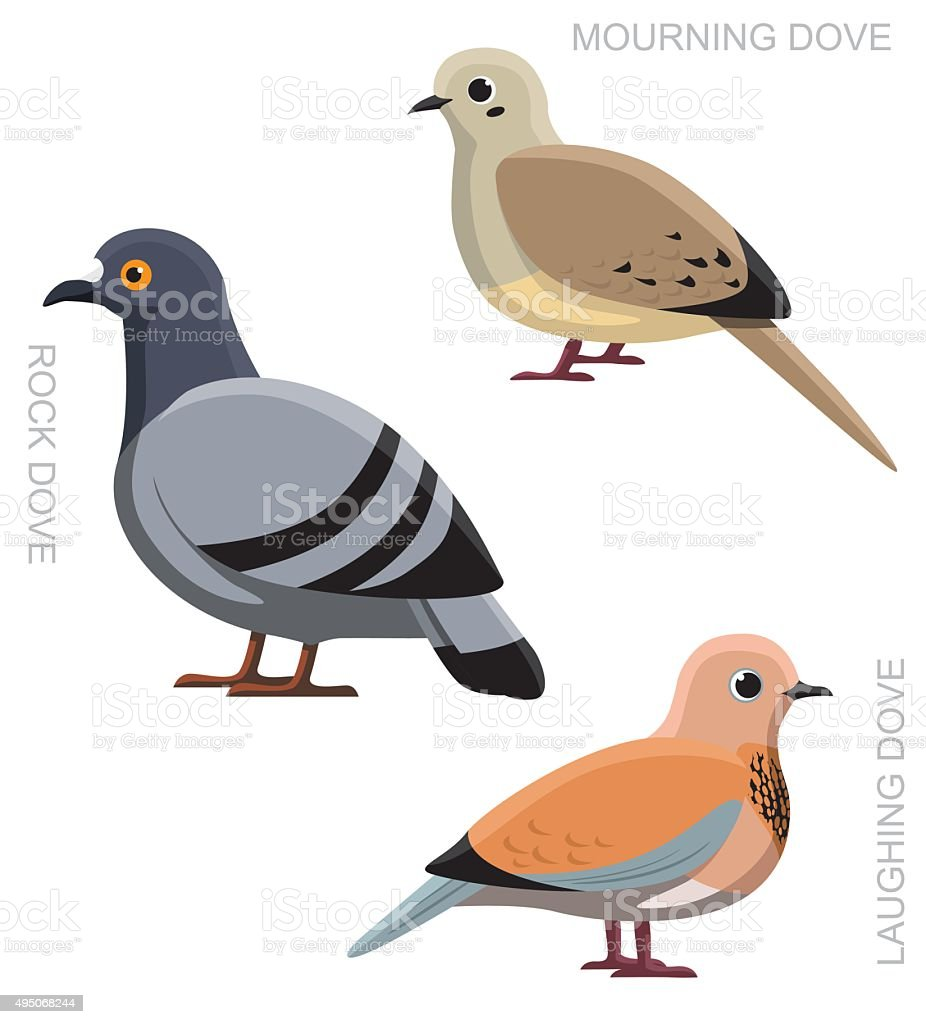 Bird Dove Pigeon Set Cartoon Vector Illustration vector art illustration