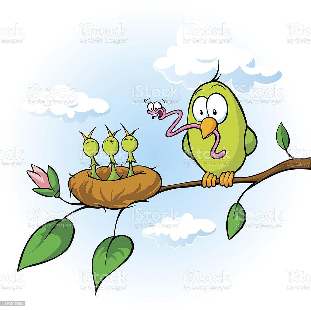 bird feeding hungry chicks vector art illustration