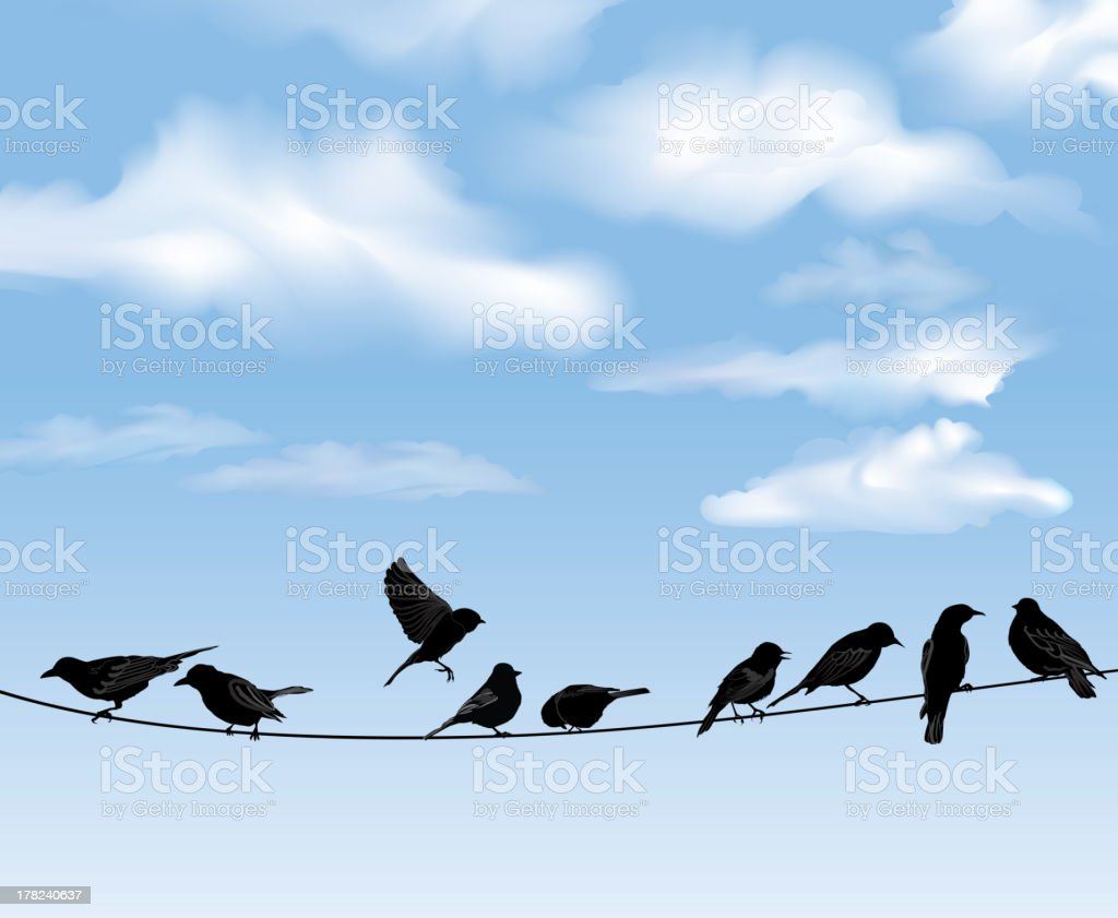 Bird icon set. Sky background. Vector illusrtation vector art illustration