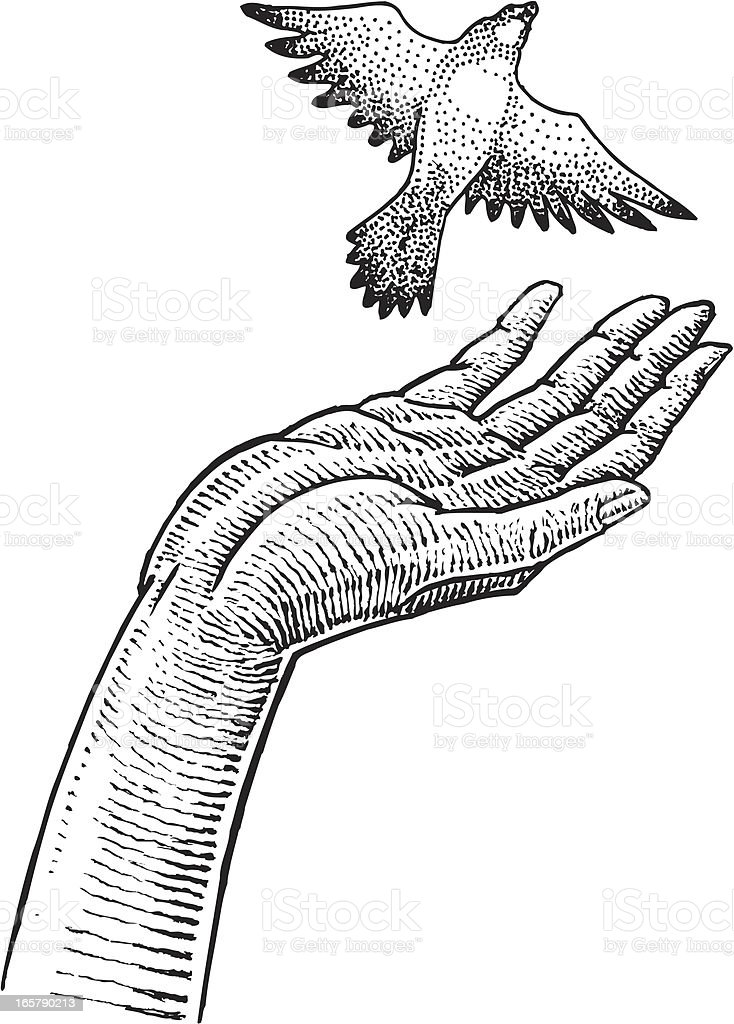 Bird in Hand - Freedom royalty-free stock vector art