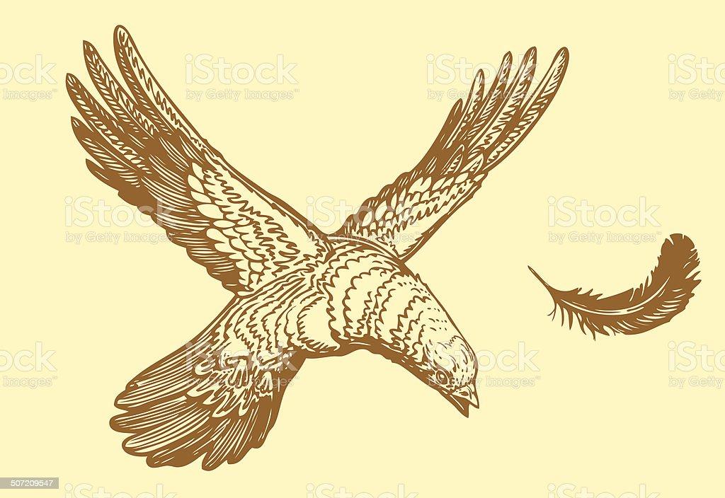 bird in the form of letter X vector art illustration