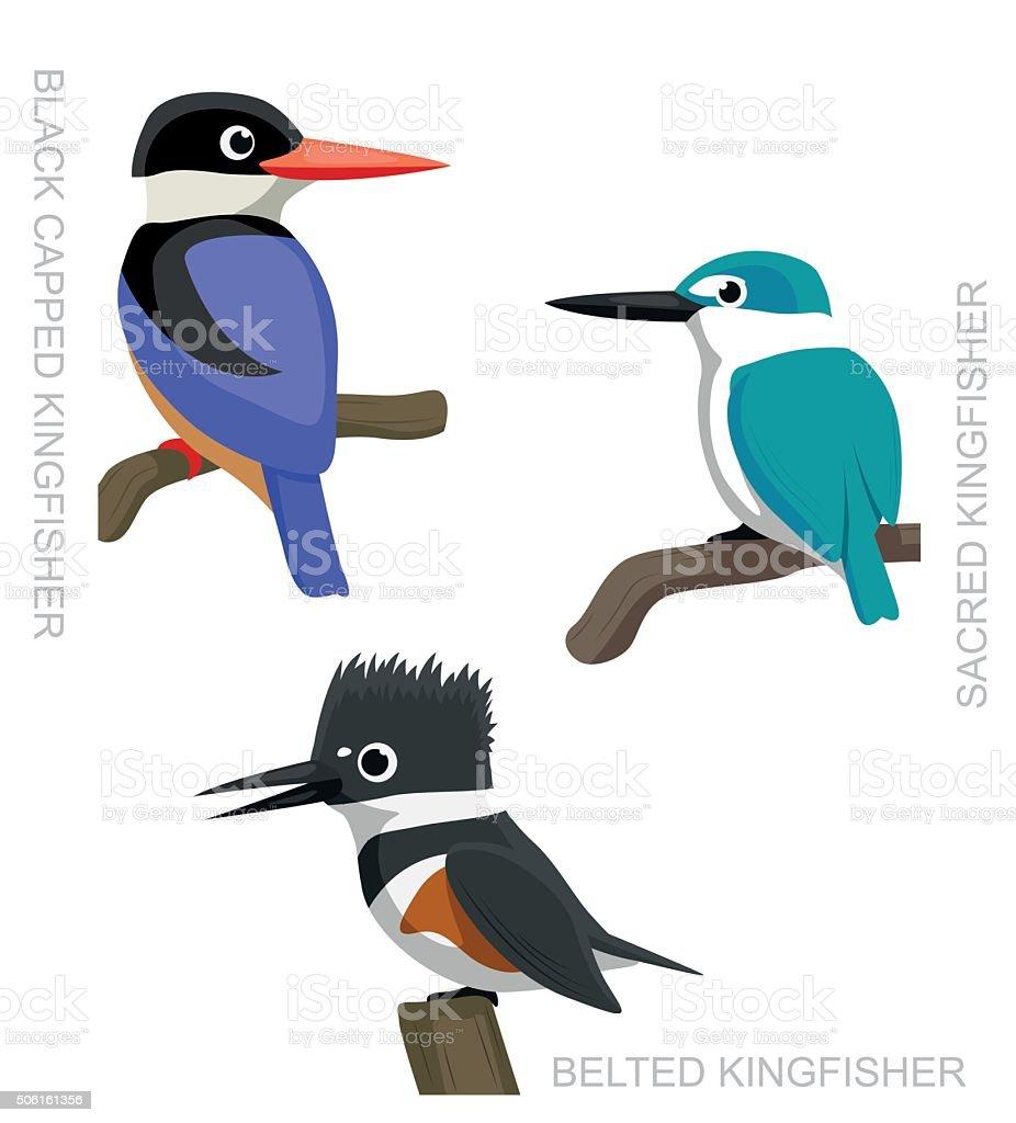 Bird Kingfisher Set Cartoon Vector Illustration 2 vector art illustration