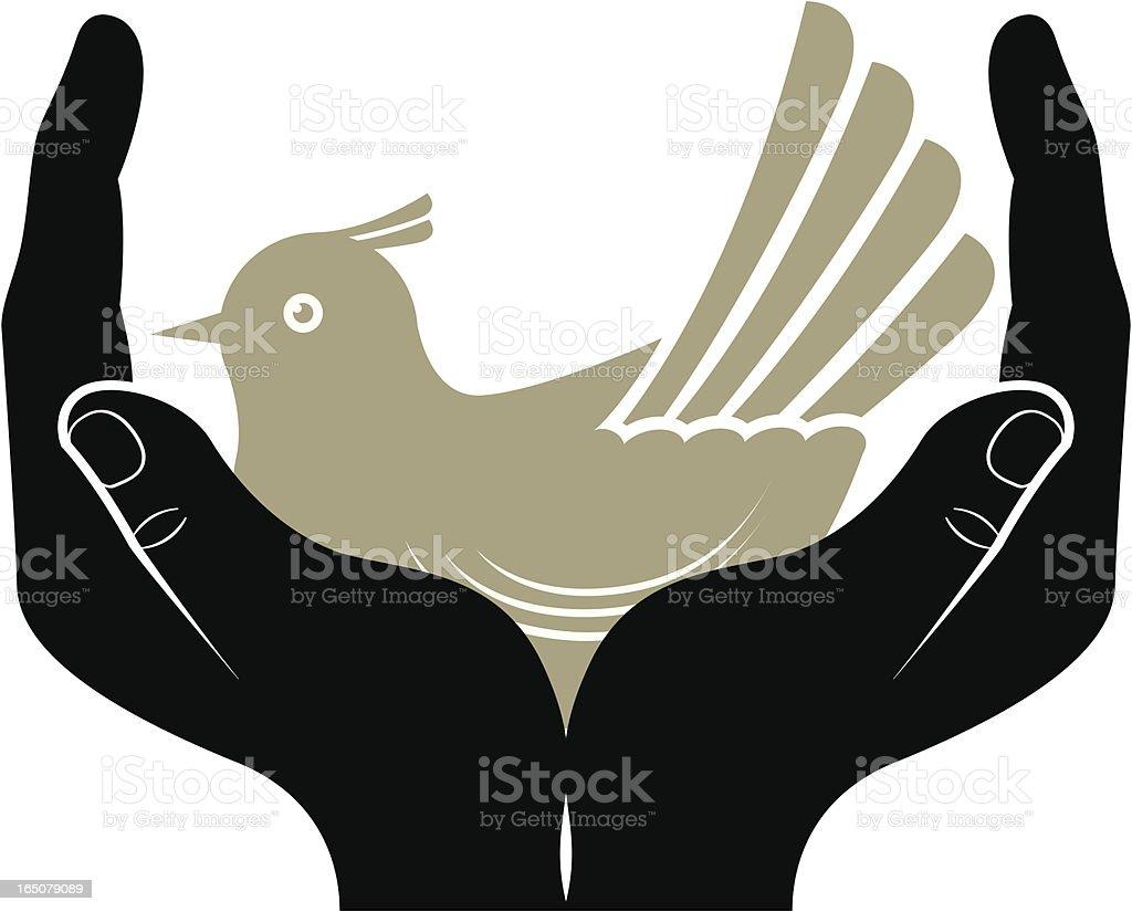 Bird lover vector art illustration