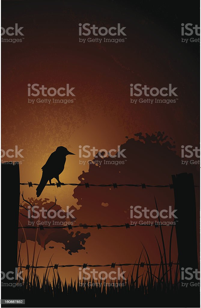 Bird on Barbed Wire Fence royalty-free stock vector art