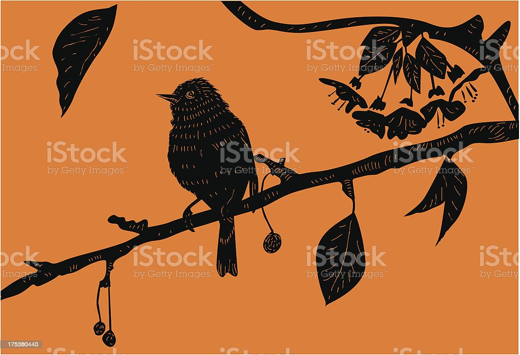 Bird on the branch royalty-free stock vector art