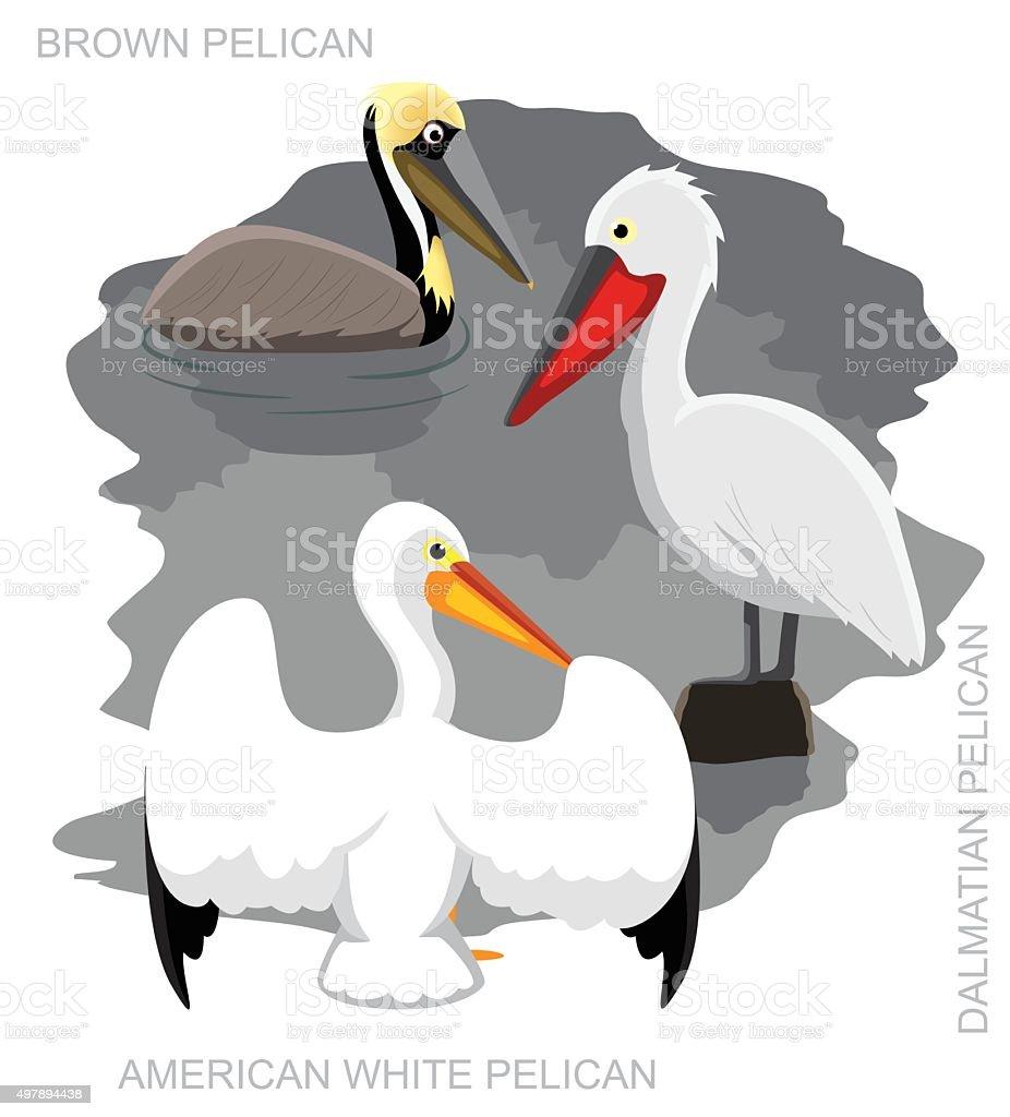 Bird Pelican Set Cartoon Vector Illustration vector art illustration
