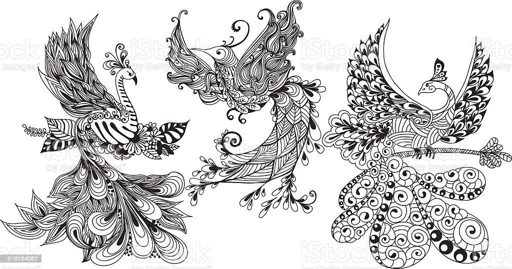 Bird Phoenix three vector art illustration