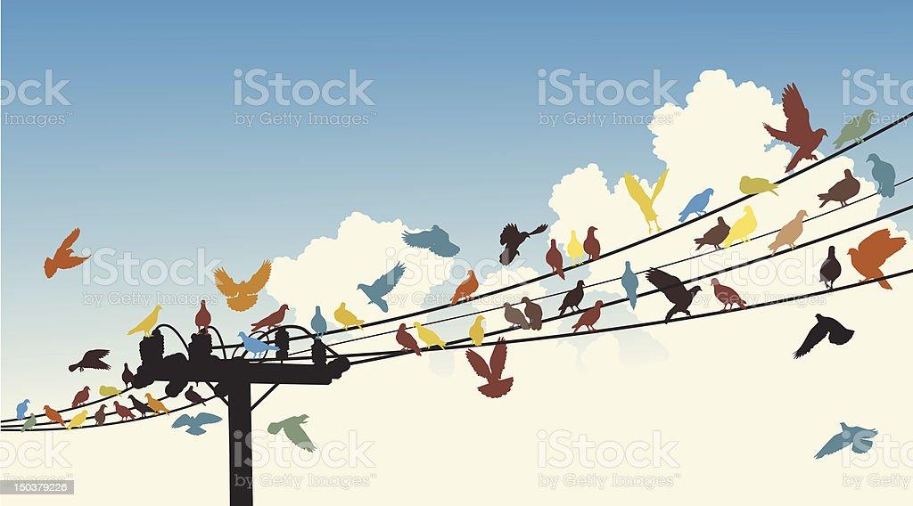 Bird roost vector art illustration
