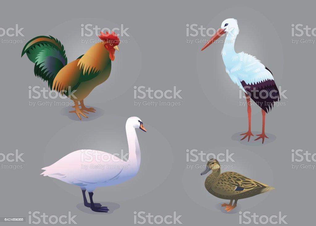 Bird set vector art illustration