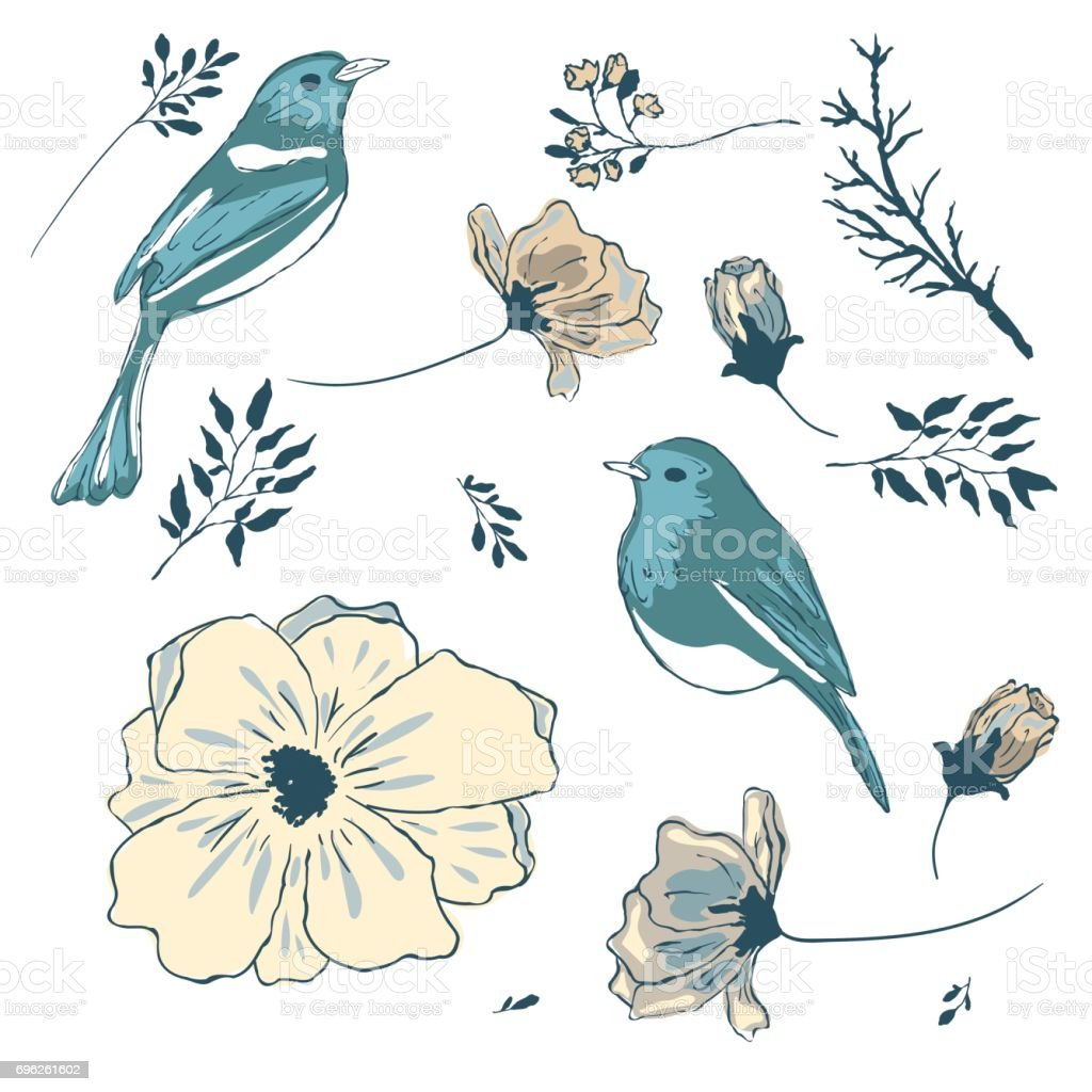 Birds and flowers. A collection of vector elements for design. vector art illustration